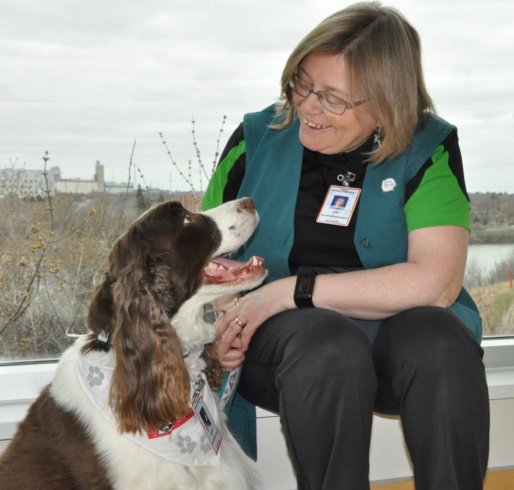 Jane Smith and Murphy, an English Springer Spaniel, the first therapy dog and handler to visit an Emergency Department in Canada, the Royal University Hospital in Saskatoon Saskatchewan